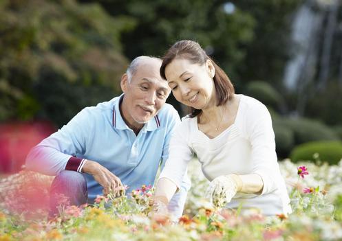 elderly-2015-8-8-01